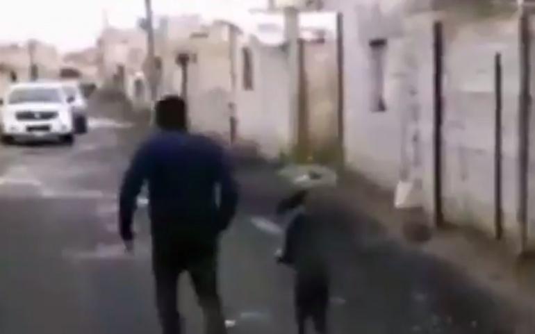 REGRESÓ POR SU PERRITO QUE QUEDÓ ATRAPADO